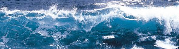 砕ける波の激しさ、人生も激しく、そしてしなやかに!