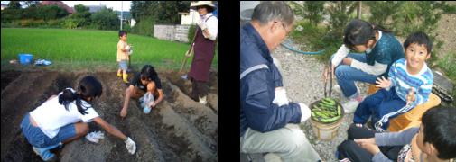 恒例!孫とおばあちゃんの畑仕事   採れたて空豆を焼くおじいちゃん