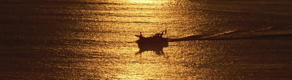 人は人生の海を知の豊かさで80%は乗り越えていくことができる