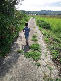 やっぱり田舎はイイね「ボクだけの散歩道」