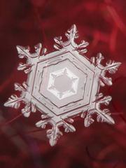 雪の結晶の神秘さはすごすぎる!