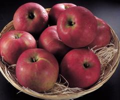 奇跡のリンゴは宇宙の法則によって