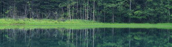 人間関係は鏡のようなもの。。。