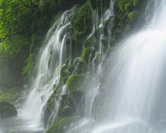 焦らず、気張らず、大自然の表情が季節とともに移りゆくように!