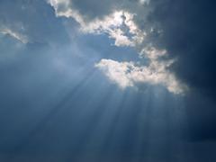 曇っていた思考に陽光がさし始め、真っ青な空が現れてくるような感覚に