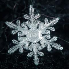 どの人間も一個のユニークな存在につくったのだ。ちょうど、どの雪片も一個のユニークな形状としたように。