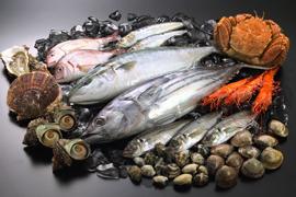 魚、魚、魚、魚を食べるとー♪