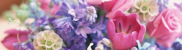僕たちは、世界に一つだけの花。めいっぱい宇宙に向けて咲き誇ろう!