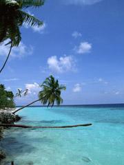海が恋しい季節がやってきた!と同時に、新たな決意で2010年後半戦を頑張ろう!