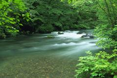 人生は川の流れのようなもの