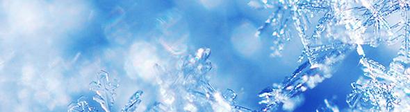 大自然:雪の結晶